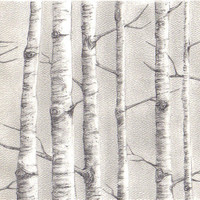 Original Birch trees by SarahsArtPlus on Etsy