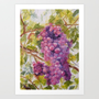 GRAPES Art Print by Vargamari