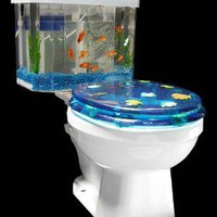 Toilet Aquarium ? Funny, Bizarre, Amazing Pictures &amp; Videos