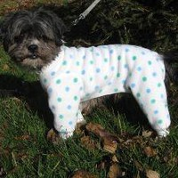 ON SALE Tootlewear's Dog Polka Dot Longjohns by tootlewear on Etsy