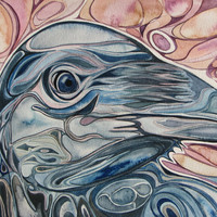 Beautiful Crow 4 x 6 print of hand painted detailed watercolour artwork in rich rust salmon pink and dark blue colours