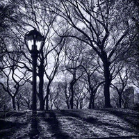 Central Park New York photo black & white by ImagesByCW on Etsy