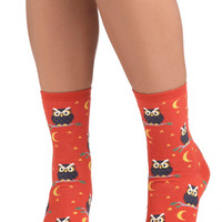 Owl-Inclusive Socks | Mod Retro Vintage Socks | ModCloth.com
