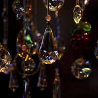 Jewels Photograph by Scott Terry - Jewels Fine Art Prints and Posters for Sale