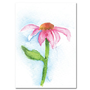 Pink Daisy Watercolor Painting ACEO Fine Art Print