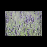 Lavender Field Placemat from Zazzle.com