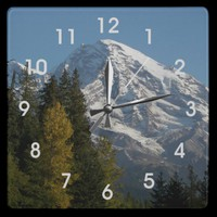 Rainier View Wall Clock from Zazzle.com