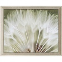 "Paragon Dandelion III by Miller Candice Olson Art - 26"" x 32"" - 6822 - All Wall Art - Wall Art & Coverings - Decor"