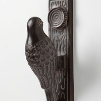 Woodpecker Knocker - Anthropologie.com
