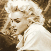 Marilyn Monroe Print at AllPosters.com