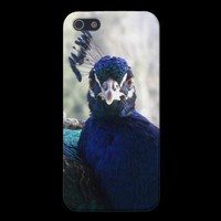 Mad Peacock iPhone 5 Cover from Zazzle.com