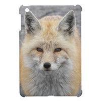 Red Fox iPad Mini Covers from Zazzle.com
