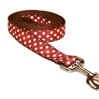 Sassy Dog Wear 6-Feet Rust/White Polka Dot Dog Leash, Large