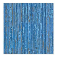 Old Distressed Blue Painted Wood Look Shower Curtain> Coastal, Vintage and Urban Chic Shower Curtains> Rebecca Korpita Coastal Design