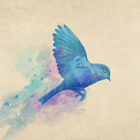Blue Bird  Art Print by Terry Fan