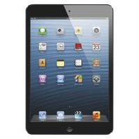 Apple® iPad mini 16GB Wi-Fi - Black (MD528LL/A)