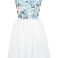 Floral Print Lace Tutu Dress - Dresses - Clothing - Miss Selfridge