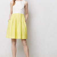Anthropologie - Laced Lemondrop Dress