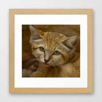 Sand Cat Framed Art Print by catspaws