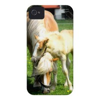 sweet horses design iPhone 4 case from Zazzle.com