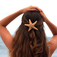 Sugar Starfish Large Barrette by peacelovestarfish on Etsy
