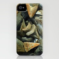 Fossil Megalodon Shark Teeth iPhone Case by Rebecca A Sherman | Society6