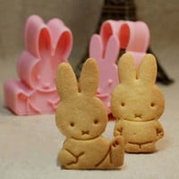 Bunny Rabbit 3D Cookie Cutter Stamp Set