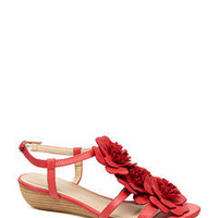 ideeli | GC SHOES Rosanna
