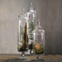 NEW Chateau Tall Botanical Jars