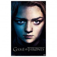 Game of Thrones Arya Stark Season 3 Poster [11x17]