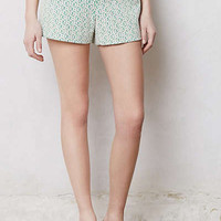 Anthropologie - Rose Point Shorts