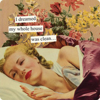 Anne Taintor Magnets: I dreamed my whole house was clean...