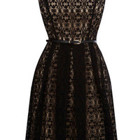 Oasis All Dresses |  Black Lace Cut Out Dress | Womens Fashion Clothing | Oasis Stores UK