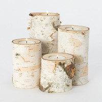 Fallen Birch Branch Votive Set