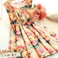 Retro flower waist vest skirt of the dress