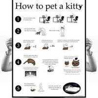 How to pet a kitty poster - The Oatmeal