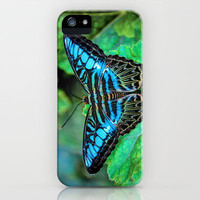 BUTTERFLY BLUE iPhone & iPod Case by catspaws