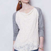Anthropologie - Embossed Lace Cowlneck