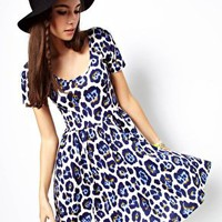 ASOS Skater Dress In Large Leopard Print at asos.com
