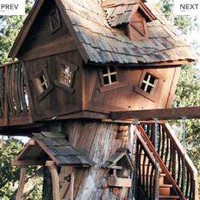 The Well Appointed House by Melissa Hawks. Deluxe Original Treehouse