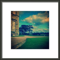 Peacock-colored #attingham ... #park Framed Print By Alexandra Cook