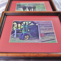 Adorable calf triplets rustic framed photo print