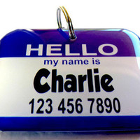 Hello My Name Is... Pet Tag