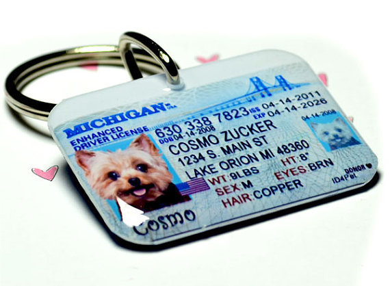 Michigan Driver License ID tag Double Sided