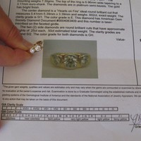 "Have You Seen the Ring?: ""Hearts on Fire"" 3 Diamond Wedding Ring"