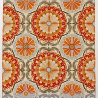 Festival Rug by Anthropologie Orange