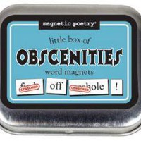 LITTLE BOX OF OBSCENITIES MAGNETIC POETRY