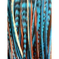 "4""-7"" Indian Blue Fashion Trend Feathers"