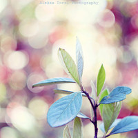 Pastel nature photography, nursery art, pastel nursery decor, bokeh photography, garden photography, dreamy photography, wall decor 5x7