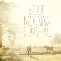 Good Morning Sunshine. Horse Photo. Fine Art Photography. Typography. Shabby Chic